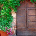 Cómo crear un jardín estilo mediterráneo